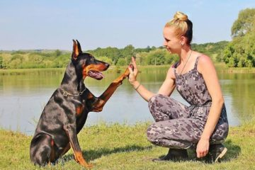 are dobermans good with kids